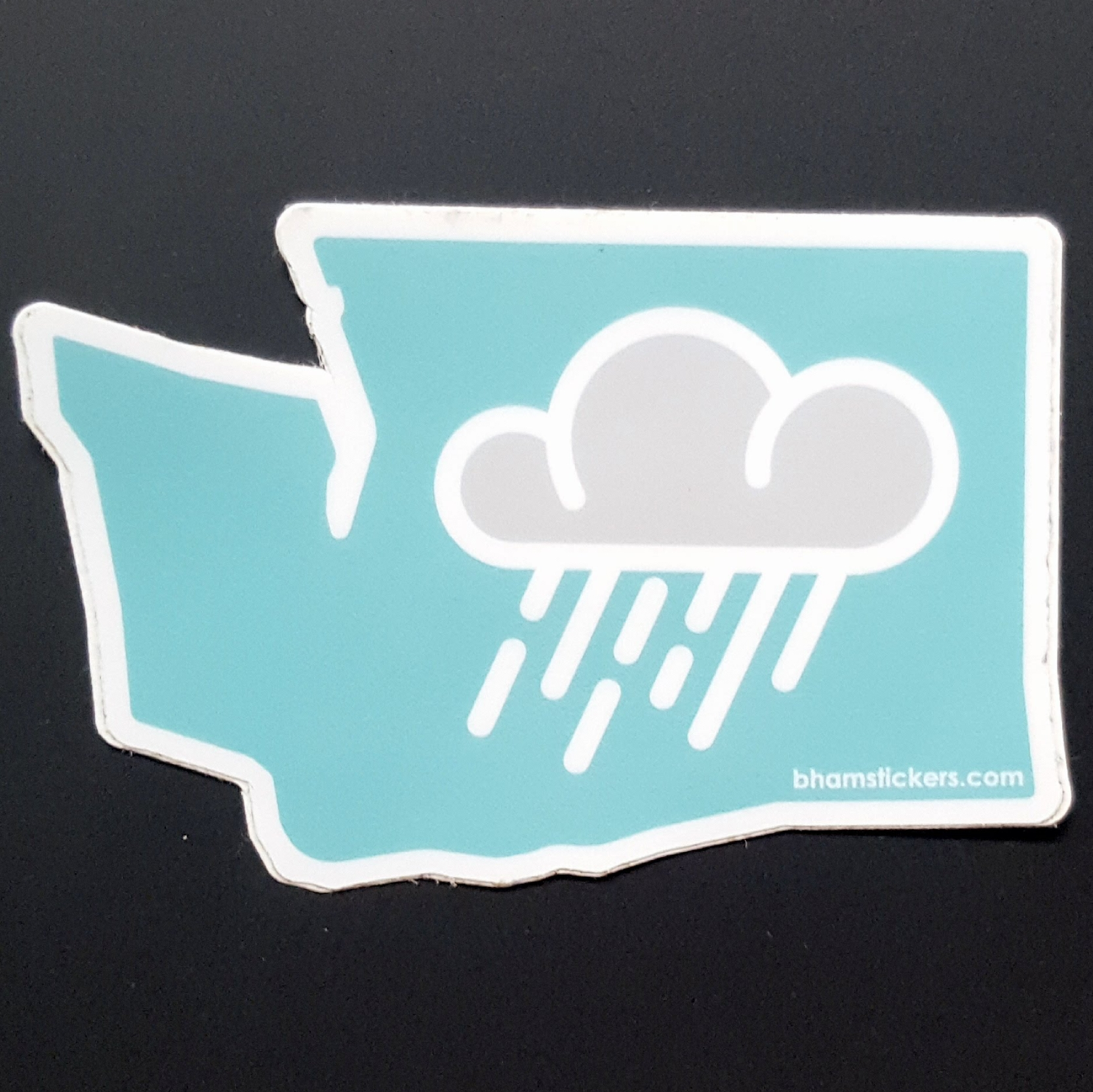 Evan Dahl Rainy State Sticker