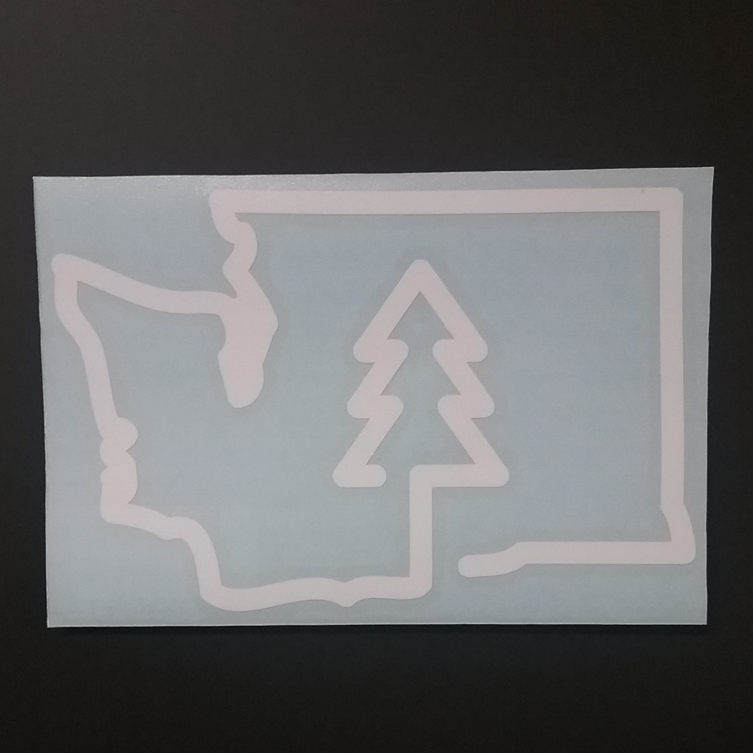 Washington Tree Outline Diecut