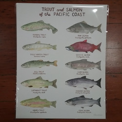 Trout and Salmon Print