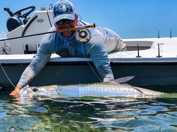 Tarpon are hands down my favorite fish t