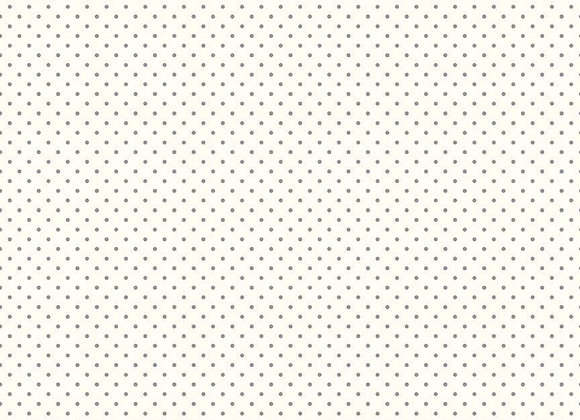 Le Creme Swiss Dot Gray C660-40 Gray byThe RBD Designers for Riley Blake