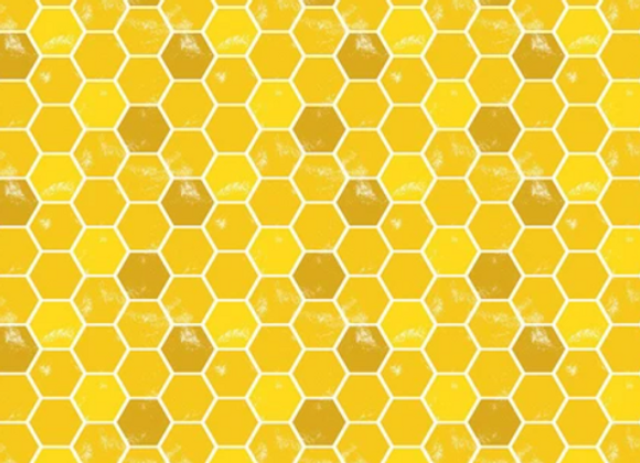 Feed the Bees -Honeycombs- by 3 Wishes Fabric