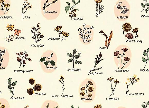 TOR-13862  The Open Road Roadside Wildflowers by Art Gallery
