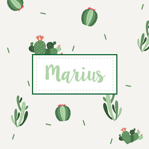 Marius - 001