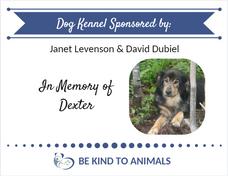 Kennel Sponsor Plaque dog Dexter.png