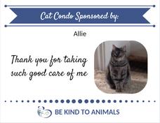 Kennel Sponsor Plaque cat Allie.png