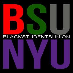 BSUNYU Logo
