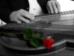 A zither and a red rose