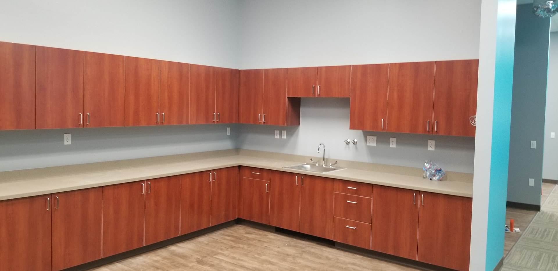 Cabinet and Sink Area - Buildout Pros