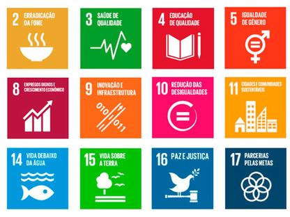 Desenvolvimento socioeconômico municipal associado à sustentabilidade e à preservação ambiental