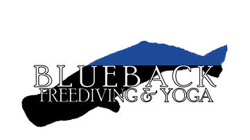 Blueback FULL NAME LOGO 020319.jpg