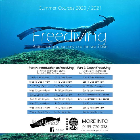 BB Summer COURSE POSTER 2020 2021 SQ.jpg