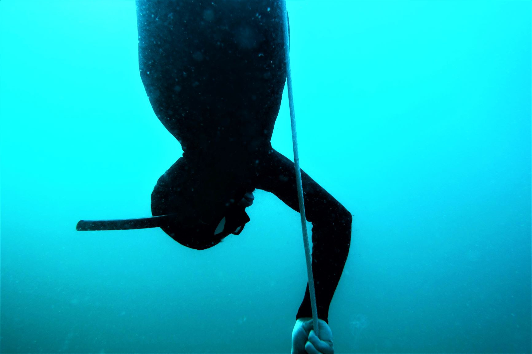 ONE-ON-ONE PADI FREEDIVER COURSE