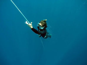 Tania 25m Free Immersion 281215 Amed.jpg