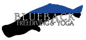 Blueback FULL NAME LOGO 110718.jpg
