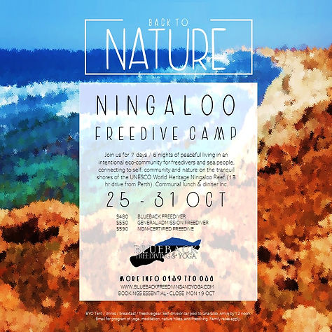 BB NINGALOO FREEDIVE CAMP POSTER 25 to 3