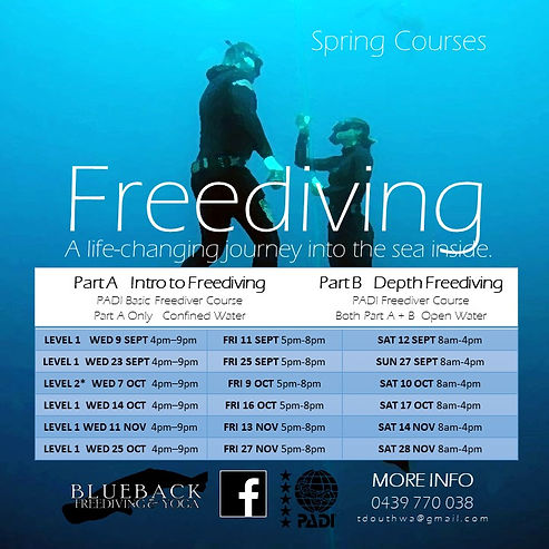 BB Spring COURSE POSTER 2020 SQ.jpg