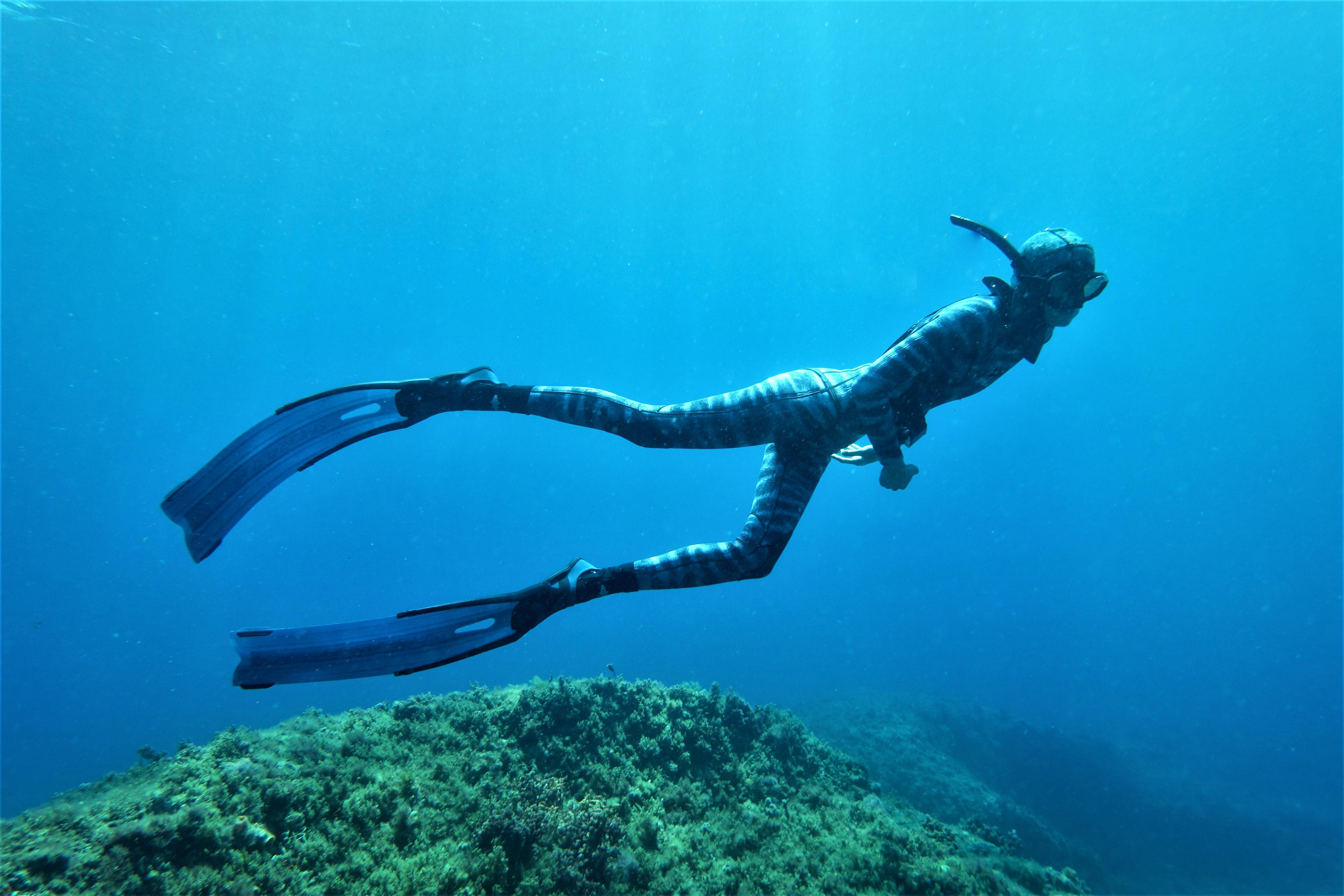BLUEBACK BLUE WATER COACHING