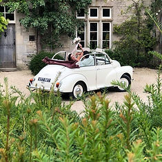 Moggy Wedding.jpg