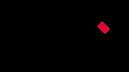 Vicaima-logo-grande.png