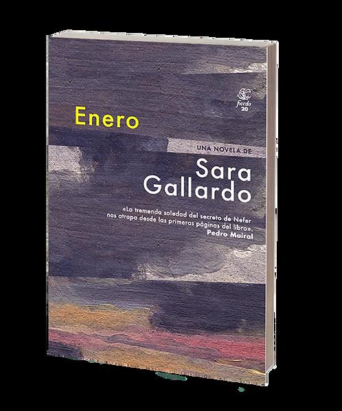 Gallardo, Sara - ENERO (novela)