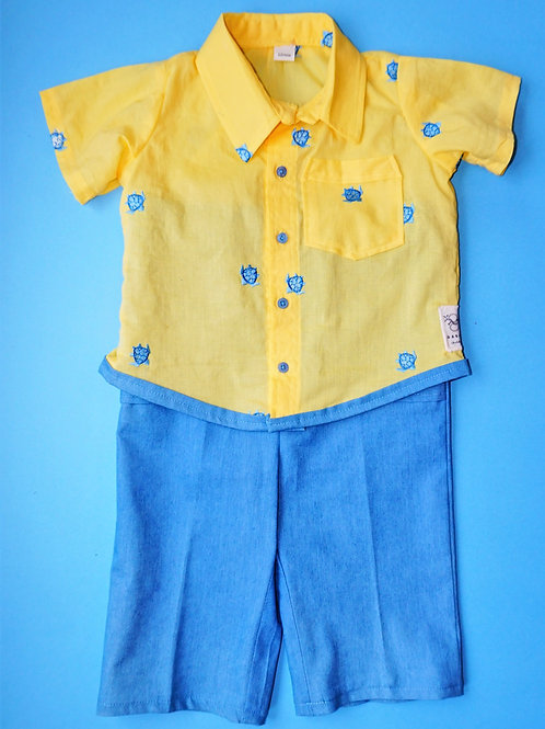 Boys Blue Turtles Button-Up and Matching Pants (size 12 months)