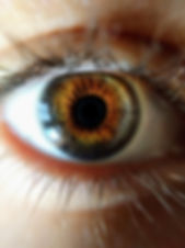 Canva - Human Eye Closeup Photo.jpg