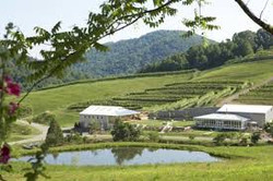 Delfosse Vineyards and Winery