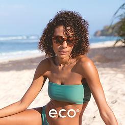 Eco Dena2.jpg