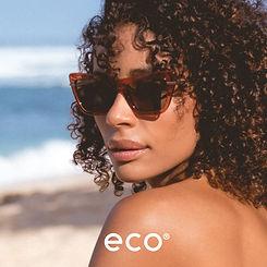 Eco Dena3.jpg