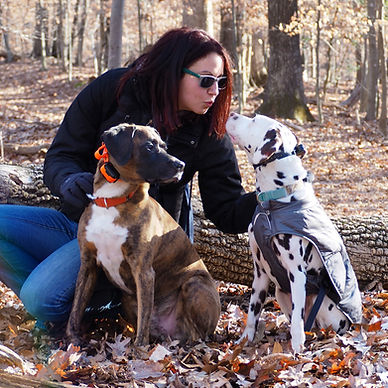 Lara Tal Cohn of northern Virginia's For Pup's Sake is a Fairfax, VA dog trainer.