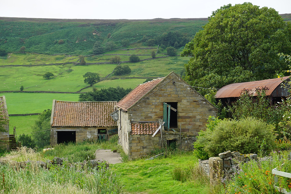 Listed barns in the North York Moors National Park with lime mortar and pantile roof