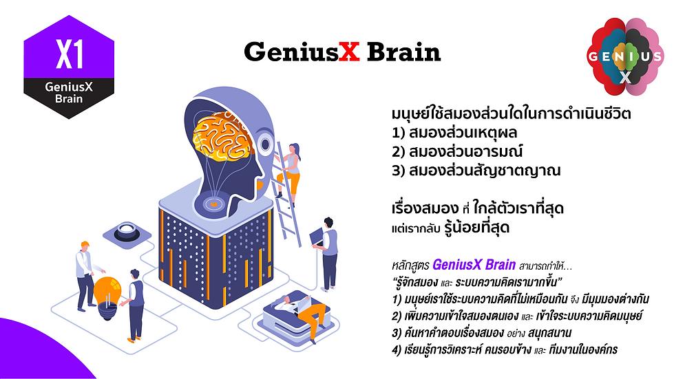 X1 GeniusX Brain B.png