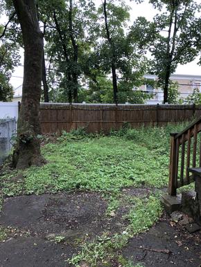 22-backyard-1heic