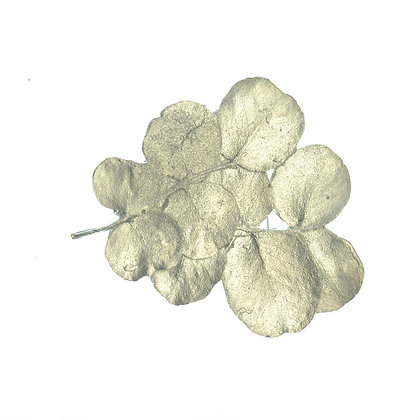 Round Leaves Brooch
