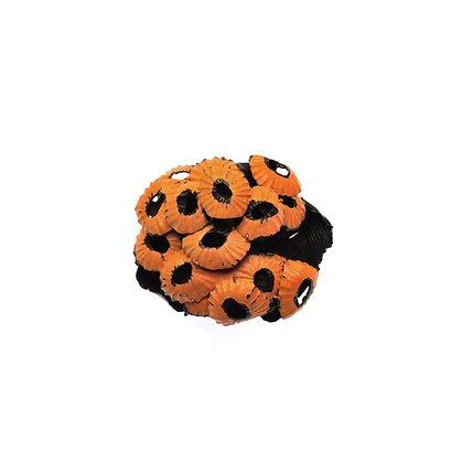 Orange Shell Brooch