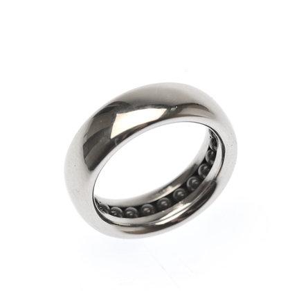 Stainless Balltrack Ring