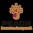logo pngs PEACH-03.png