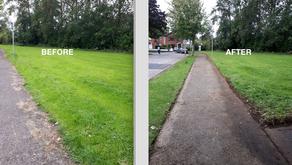Castleknock Park clean up