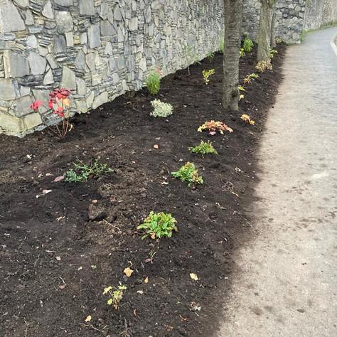 Keen gardeners - take note