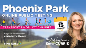 PUBLIC MEETING re: Phoenix Park