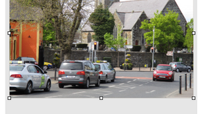After a gap of 18 years, Castleknock Tidy Towns are back!