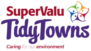 National Tidy Towns results 2019