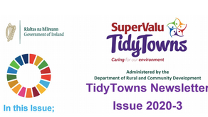 DRCD TidyTowns Newsletter article