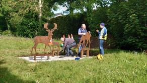 A deer gift for Castleknock
