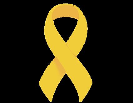 description-yellow-ribbon-16.png