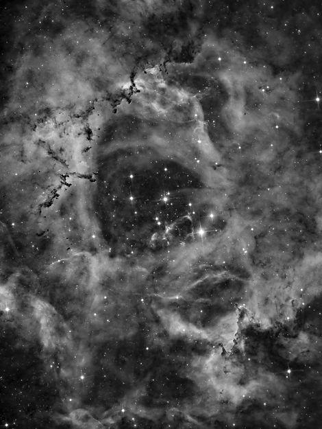 rosetta_nonlinear_final_reduced starsver