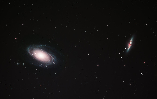 A neighbouring group of galaxies: the M81 Galaxy Cluster