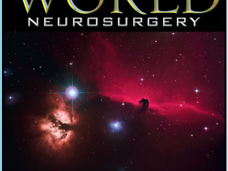 "The Horse-Head is on the cover of ""World Neurosurgery"""