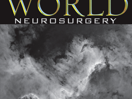 "Again on the cover of ""World Neurosurgery"" - The Cygnus Wall"